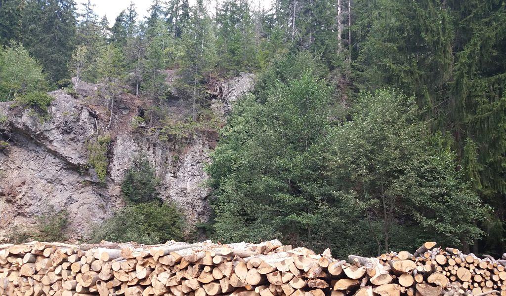 Acțiune de anvergură pentru protejarea fondului forestier, în Harghita (VIDEO)
