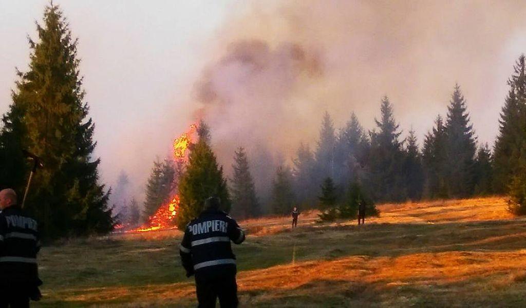 Arderea vegetației uscate fără acceptul autorităţilor este interzisă!